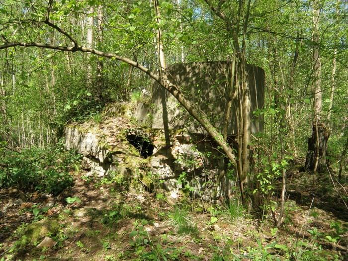 Ruiny młyna papierniczego w Rosiejewie- Papier und Zelullosenfabrik  Pulverkrug 974bf193f164fdee