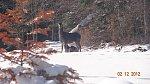 images35.fotosik.pl/1178/65d3b8a9668fd0e1m.jpg