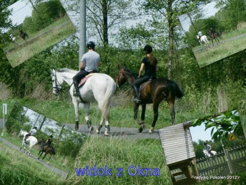 http://images35.fotosik.pl/1418/4353dd7acd397ff9med.jpg
