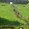 Udana wyprawa #Jura