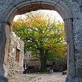 #zamki #chojnik #jesień #drzewo