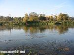 images35.fotosik.pl/19/7b191c973a7b185dm.jpg