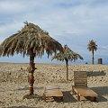 www.sztucznepalmy.pl #parasole #plażowe #hawajskie #palmy #sztuczne #basen #aquapark