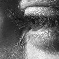 #oko #makro #zbliżenie #rzęsy