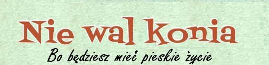 http://nie-wal-konia.blogspot.com/