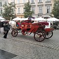 Bryczka Kraków #kraków #dorożka #dorożki #BryczkiKonne #bryka #koń #konie