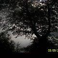 zlo czai sie wszedzie #burza #chmury #drzewo #niebo