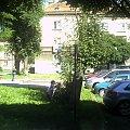 z okna dużego pokoju mieszkania w Oświęcimiu #Oświęcim #okno #podwórko