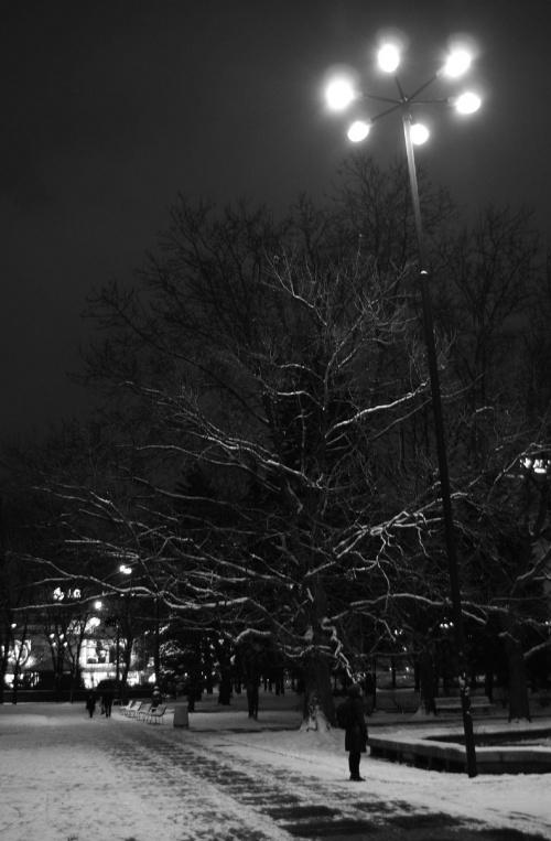 #zima #noc #światło #śnieg