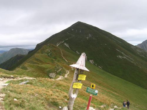 Starorobociński Wierch z Raczkowej Przełęczy #Góry #Tatry #StarorobociańskiWierch