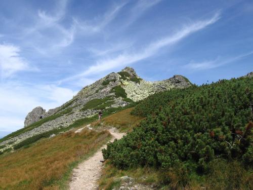 Siwe Skały #Góry #Tatry #StarorobociańskiWierch