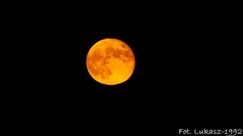 Księżyc się zarumienił #burza #deszcz #ksiezyc #księżyc #lato #pajęczyna #pejeczyna #slonce #słońce #wiosna