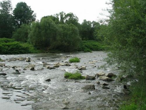 Rzeka Wisła #rzeka #Wisła